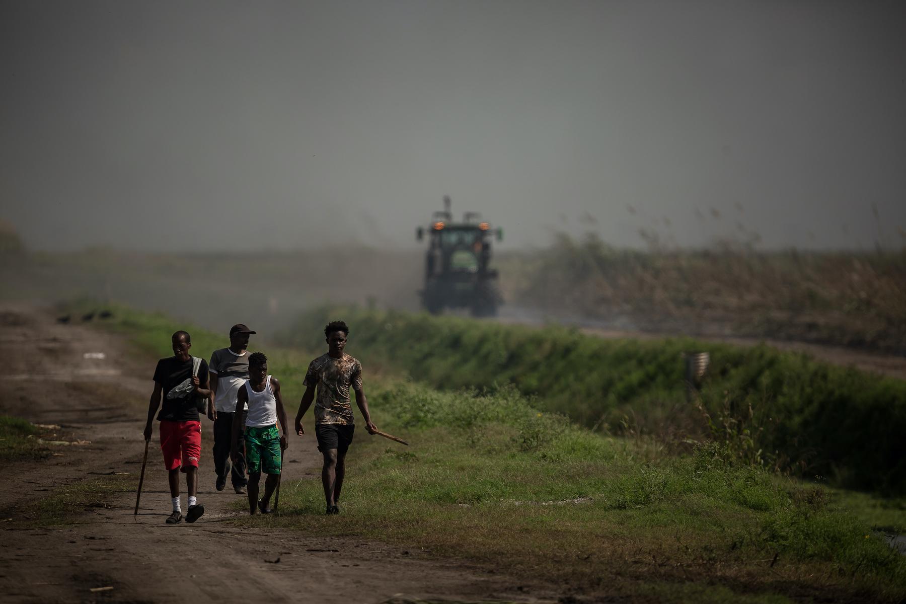 若い男性は、燃えている杖畑の近くを歩き、追いかけるウサギを探します。 グレイズの一部の家族にとって、ウサギの肉を売ることが彼らの唯一の収入源です。 トーマスコーディ/パームビーチポスト